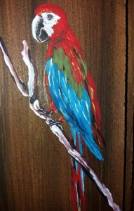Taco de madeira - Arara-vermelha