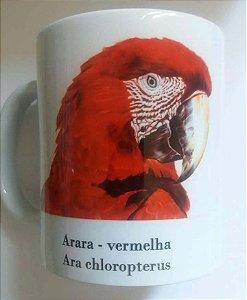 Caneca de Porcelana - arara-vermelha