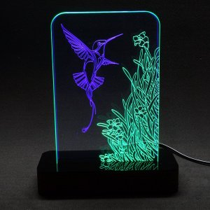 Luminária Acrílico e Led Beija-flor