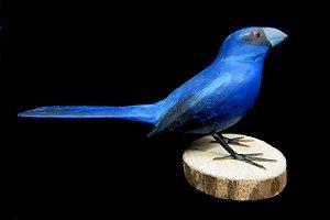 Miniatura madeira Azulão