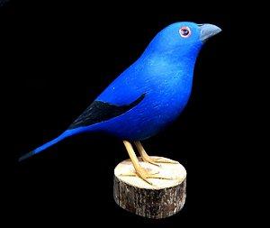 Miniatura madeira ave 2