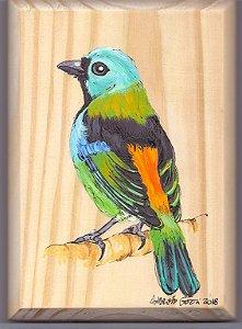 Arte em Madeira - Saíra-sete-cores