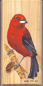 Arte em Madeira - Tiê-sangue