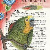 Reprodução Fine Art - Papagaio-verdadeiro