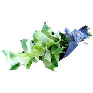Bouquet de Kallas