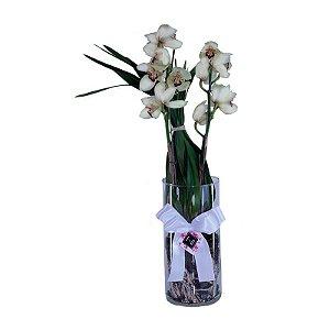 Orquídea Simbidium no Tubo