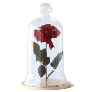 Redoma de vidro com rosa - base de MDF dourada