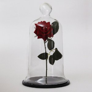 Redoma de vidro com rosa - base de MDF preta
