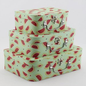Trio de maletas melancia