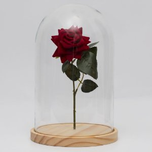 Redoma de vidro lisa com rosa - base de Pinus