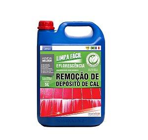 Limpa Fácil Eflorescência Remoção de Deposito de Cal 5 litros - Performance Eco