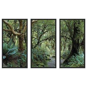 Quadro Decorativo Triplo Com Moldura Paisagem Trilha na Floresta - Art
