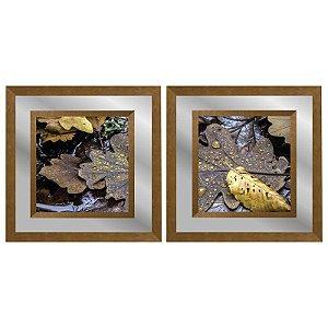 Quadro Decorativo Duplo Com Paspatur em Espelho Paisagem Folhas ao Chão 50x50 - Artframe