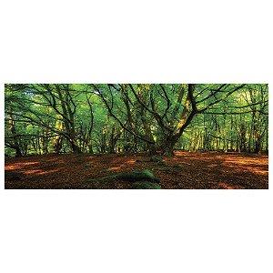 Quadro Decorativo Acrílico de Parede Paisagem Floresta 40x100 cm - Artframe