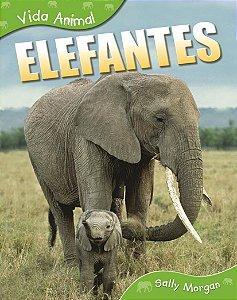 VIDA ANIMAL ELEFANTES