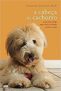 A CABECA DO CACHORRO