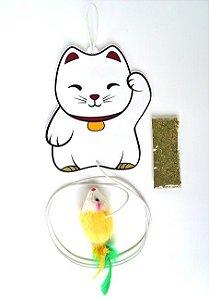 Brinquedos Para Gato Lucky Cat Pet Games