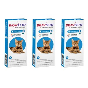 Combo 3 Antipulgas Bravecto 2,8 a 6,25kg Transdermal Gatos