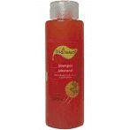 Shampoo   Tok Bothanico 500Ml Jaborandi