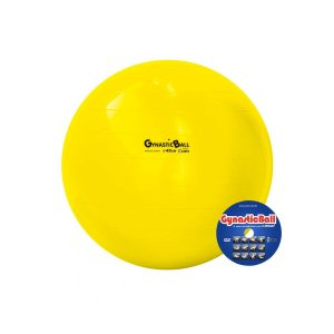 Bola Suíça P/ Pilates 45 cm Gynastic Ball - Carci