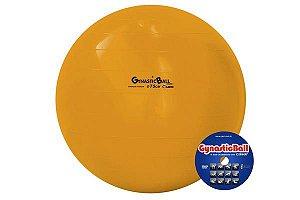 Bola Suíça P/ Pilates 75 cm Gynastic Ball - Carci