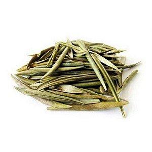 Chá de Oliveira - Rei das Castanhas