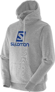 Moleton Logo Salomon