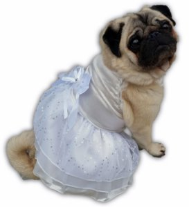 Roupa Para Cachorro Casamento - Vestido Noiva