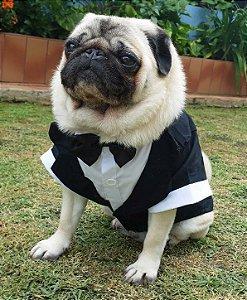 Roupa de Cachorro - Casamento Terno