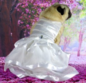 Roupa de Cachorro Casamento Vestido de Noiva Com Véu