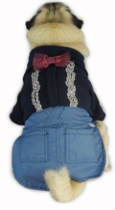 Roupa de Cachorro Social Azul Fashion