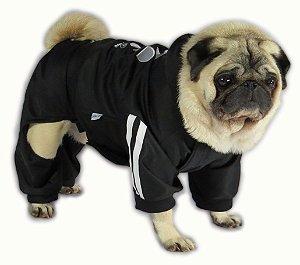 Roupa de Cachorro Inverno Frio Moleton Caninas + Calça