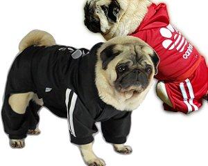 Roupa de Cachorro Inverno Frio Moletom Caninas + Calça