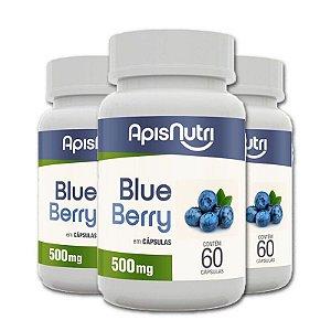 Kit 3 Blueberry 500mg Apisnutri 60 cápsulas