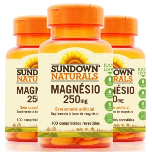 Kit - 3 Magnesium 250mg Sundown 100 Cápsulas