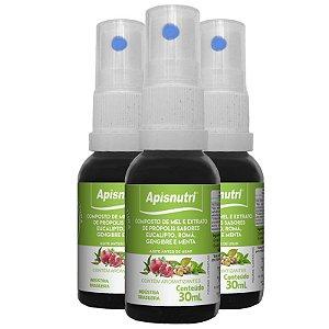 Kit 3 Composto de mel e extrato própolis Apisnutri menta 30ml