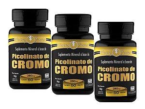 Kit 3 Picolinato de Cromo Apisnutri 60 Cápsulas