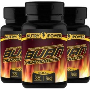 Kit 3 Burn Thermogenic 500mg Apisnutri 60 comprimidos