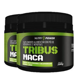 Kit 2 Pós Treino tribus maca Apisnutri Nutry Power 200g