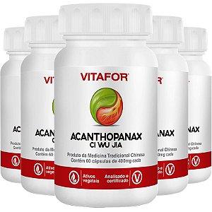 Kit 5 Acanthopanax Ci Wu Á 60 Cápsulas 400mg MTC Vitafor