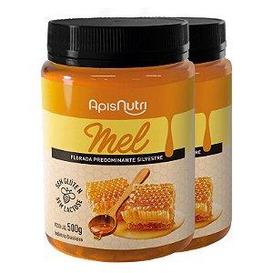Kit 2 Mel em Pote 500g Apisnutri