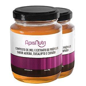 Kit 2 Composto de Mel sabor Agrião Apisnutri 300g