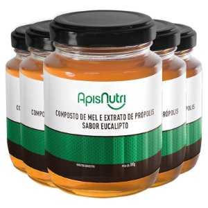 Kit 5 Composto de Mel sabor Eucalipto Apisnutri 300g