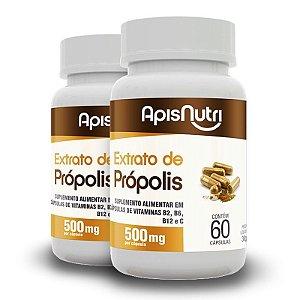 Kit 2 Extrato de Própolis 500mg Apisnutri 60 cápsulas