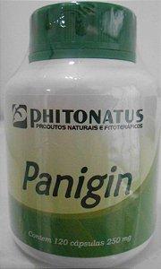 panigin phitonatus