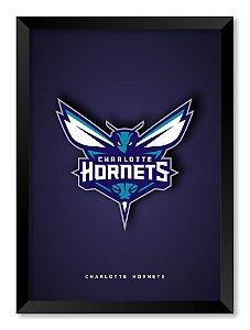 Quadro Charlotte Hornets