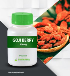 GOJI BERRY 500 MG