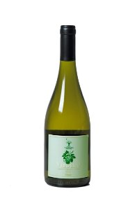 Hidromel Vinbero - Pyment com uva Chardonnay