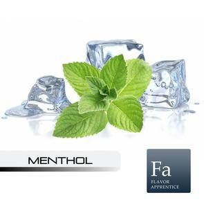 Menthol Liquid - 10ml - TPA