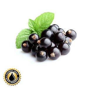 Blackcurrante 10ml | INW